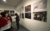 Nałęczów: Międzynarodowa wystawa rysunków w NOK (foto)