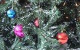 Gmina Łuków: Konkurs bożonarodzeniowych kartek