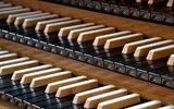 Krasnobród: Drugi koncert organowy
