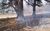 Księżpol: Porządki - TAK, ale bez wypalania traw