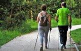 Dzierzkowice: Są pieniądze dla seniorów