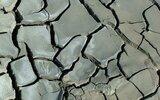 Trzydnik Duży: Radni o skutkach suszy i drogach