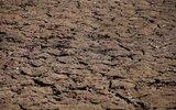 Dzierzkowice: Szacowanie strat rolniczych