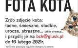 Głusk: Konkurs fotograficzny na Dzień Kota