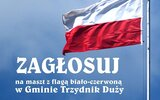 Trzydnik Duży: Maszt z flagą narodową?