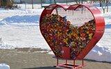 Krzywda: Serc pomocy coraz więcej