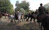 Wojcieszków: Konie w krainie Ramzesa (foto)