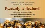 Józefów: Z matematyką w świecie pszczół