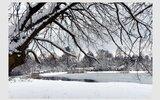 Głusk: Zimowe klimaty na fotografiach (foto)